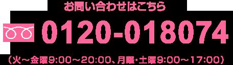 0120-018074